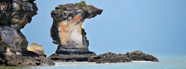 Bako-National-Park-Malaysia-(Borneo)